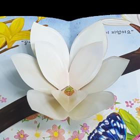 펀북 생태 [봄동산의 봄꽃]