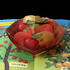 펀북 생태 [나무와 열매]